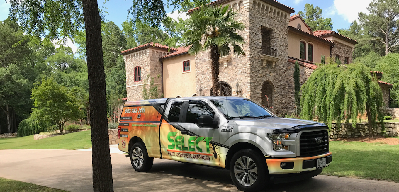 residential-pest-control2